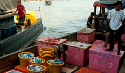 Thai boat workers